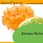 Kiwano Melon Seeds - 25 Seed Count