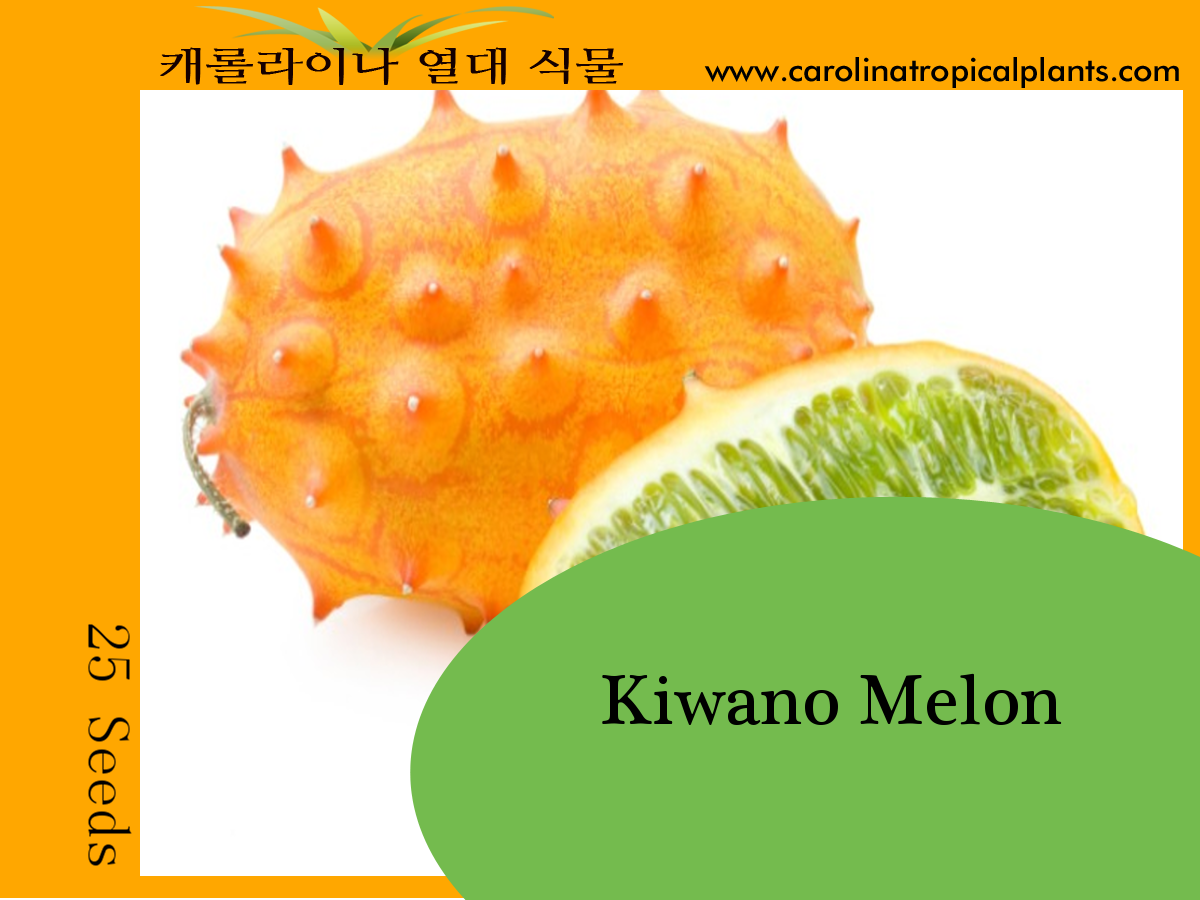Horned Melon / Kiwano Melon