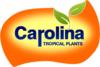 Carolina Tropical Seeds