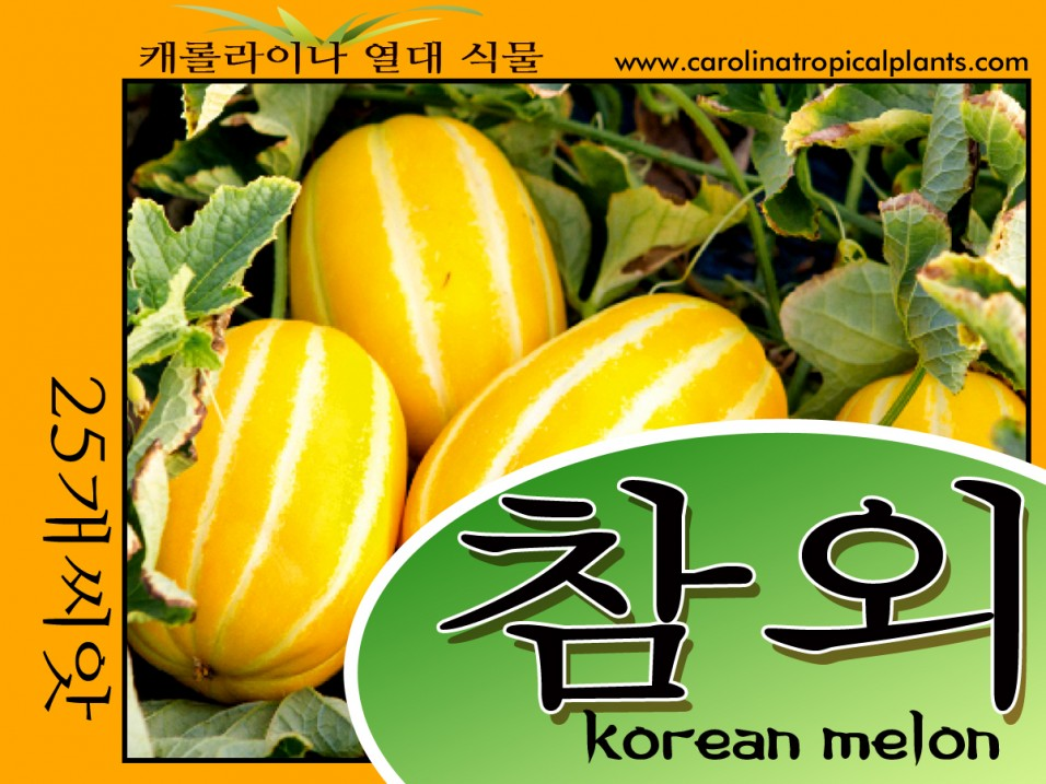 Korean Melon Seeds - 25 Seed Count