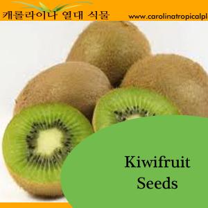 Kiwifruit Seeds - 25 Seed Count