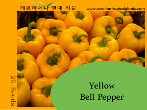 Yellow Bell Pepper Seeds - 25 Seed Count