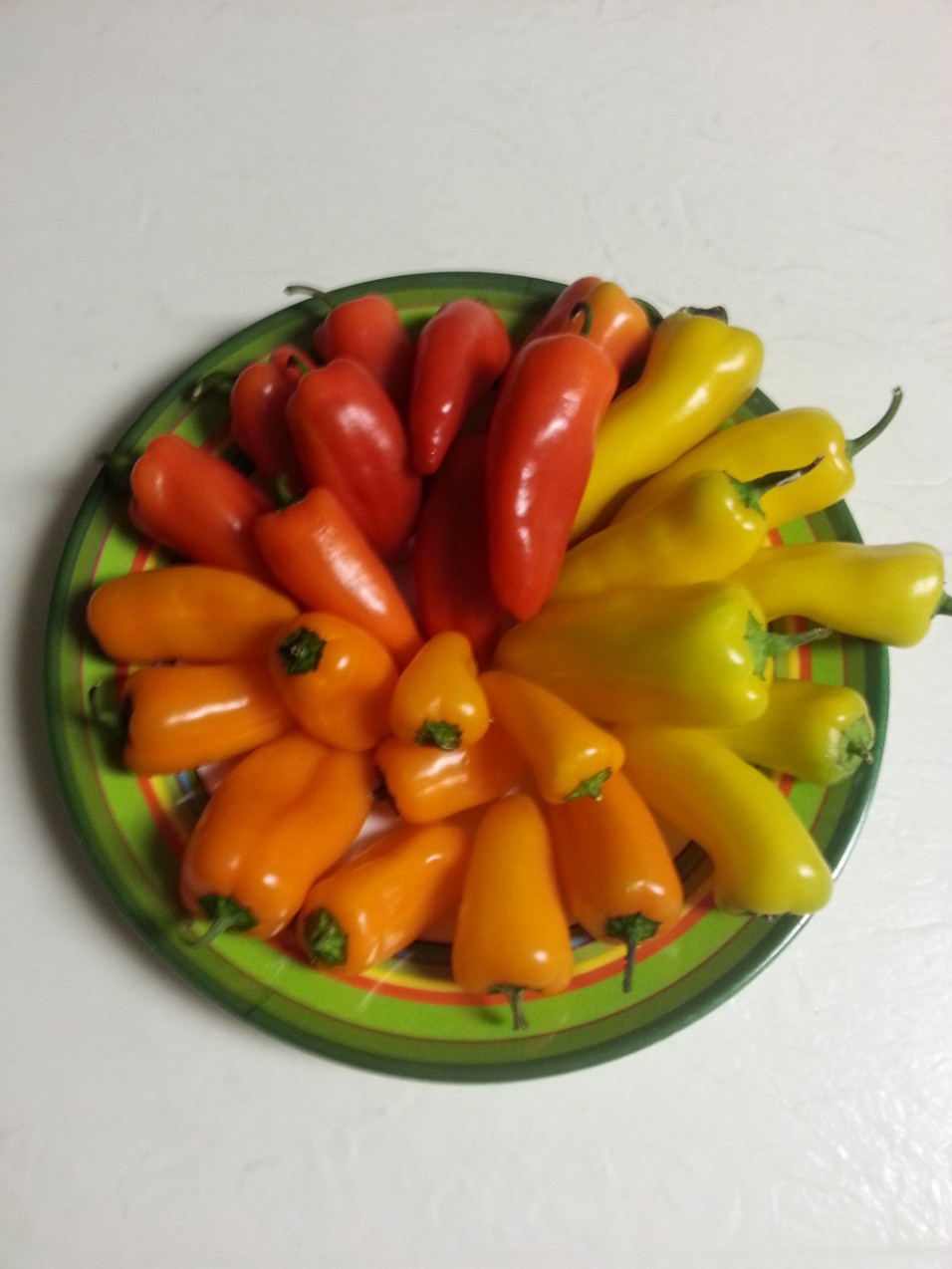 Sweet Mini Bell Peppers