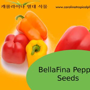 BellaFina Pepper Seeds - 25 Seed Count
