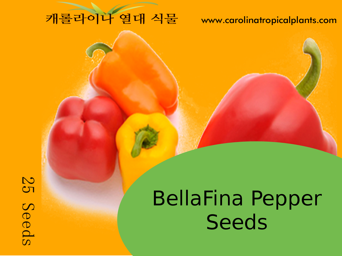 BellaFina Pepper Seeds - 25 Seed Count