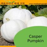 Casper Pumpkin Seeds - 5 Seed Count