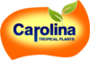 Carolina Tropical Seeds